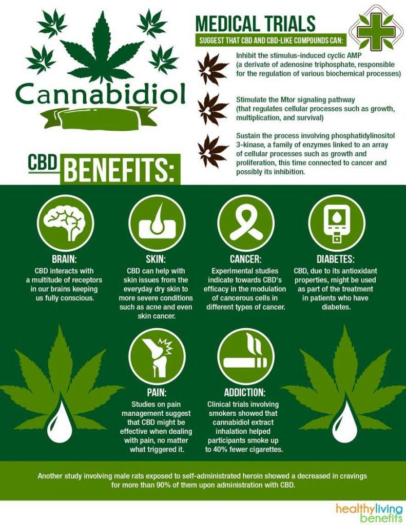 cbd-oil-benefits-explained-infographic