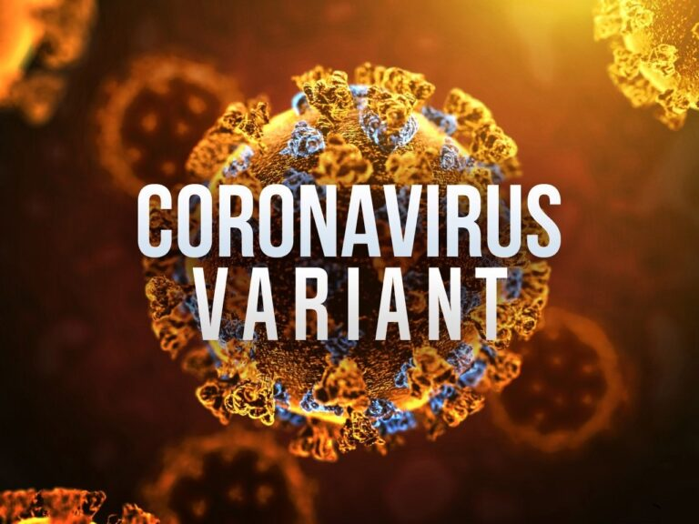 What do we know about the new COVID-19 variant?
